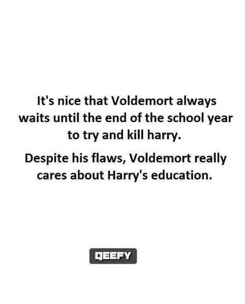 End Of The School Year: It's nice that Voldemort always  waits until the end of the school year  to try and kill harry  Despite his flaws, Voldemort really  cares about Harry's education.  TEEFY