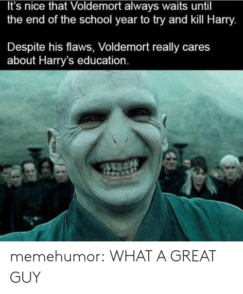 End Of The School Year: It's nice that Voldemort always waits until  the end of the school year to try and kill Harry.  Despite his flaws, Voldemort really cares  about Harry's education memehumor:  WHAT A GREAT GUY