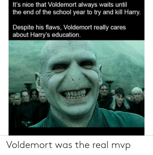 End Of The School Year: It's nice that Voldemort always waits until  the end of the school year to try and kill Harry.  Despite his flaws, Voldemort really cares  about Harry's education. Voldemort was the real mvp
