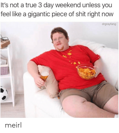 3 Day Weekend: It's not a true 3 day weekend unless you  feel like a gigantic piece of shit right now  drgrayfang meirl