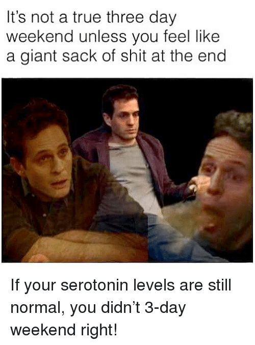 Three Day Weekend: It's not a true three day  weekend unless you feel like  a giant sack of shit at the end If your serotonin levels are still normal, you didn't 3-day weekend right!
