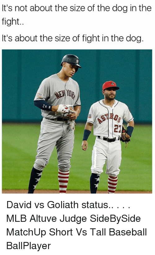 Baseball, Memes, and Mlb: It's not about the size of the dog in the  fight..  It's about the size of fight in the dog.  Yo David vs Goliath status.. . . . MLB Altuve Judge SideBySide MatchUp Short Vs Tall Baseball BallPlayer