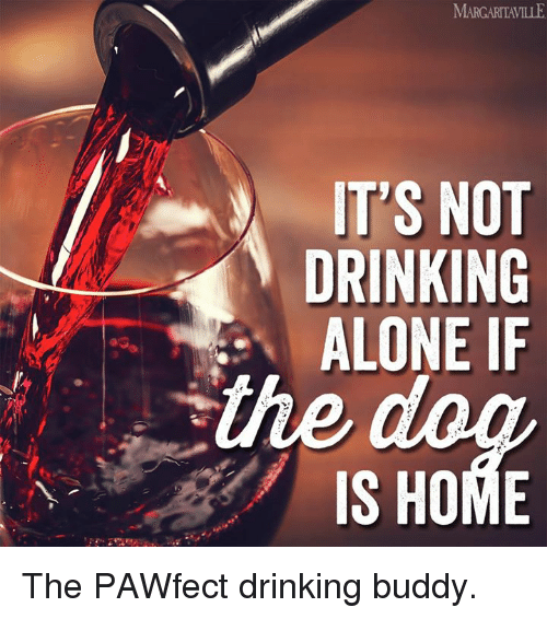Drinking Alone: IT'S NOT  DRINKING  ALONE IF  IS HOME The PAWfect drinking buddy.