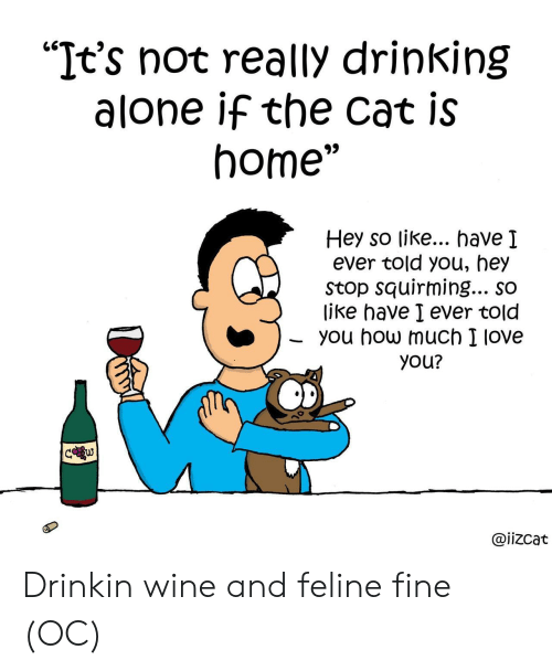 """Drinking Alone: """"It's not really drinking  alone if the cat is  home""""  Hey so like... have I  ever told you, hey  Stop squirming... so  like have I ever told  you how much I love  you?  C w  @iizcat Drinkin wine and feline fine (OC)"""