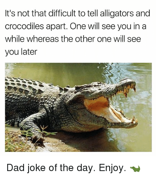 Dad, Funny, and One: It's not that difficult to tell alligators and  crocodiles apart. One will see you in a  while whereas the other one will see  you later Dad joke of the day. Enjoy. 🐊