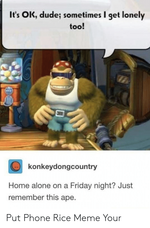 Being Alone, Dude, and Friday: It's OK, dude; sometimes I get lonely  too!  konkeydongcountry  Home alone on a Friday night? Just  remember this ape. Put Phone Rice Meme Your