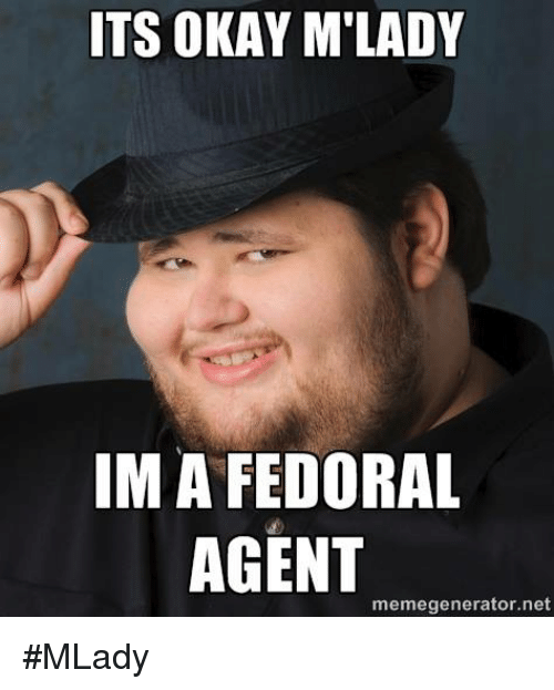Memes, Okay, and 🤖: ITS OKAY M'LADY  IM A FEDORAL  AGENT  memegenerator.net #MLady