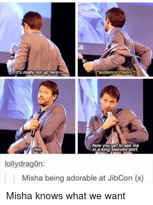 lolly: It's really hot up here  L'audience cheers  NOW you get to see me  in at  long shirt.  g-sleeved Yes  lolly dragon:  Misha being adorable at JibCon tx) Misha knows what we want
