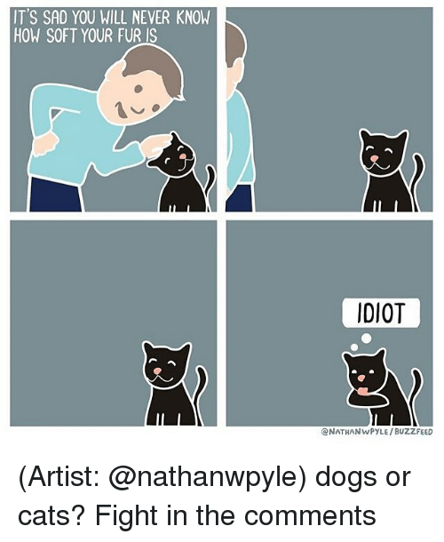 Memes, Buzzfeed, and 🤖: IT'S SAD YOU WILL NEVER KNOW  HOW SOFT YOUR FUR IS  IDIOT  CNATHANwPYLE /BUZZFEED (Artist: @nathanwpyle) dogs or cats? Fight in the comments