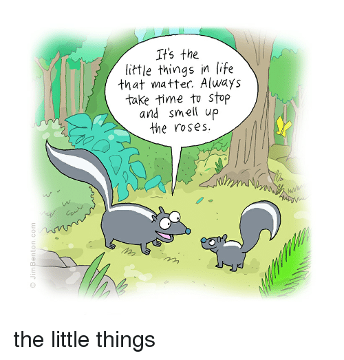 The Little Things Matter Most In Life: It's The Little Things In Life That Matter Always Take