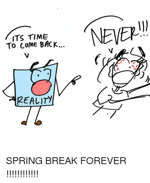 Memes, Spring Break, and Break: ITS TIME  To COME BACK.  REALITY  NEVER SPRING BREAK FOREVER !!!!!!!!!!!!