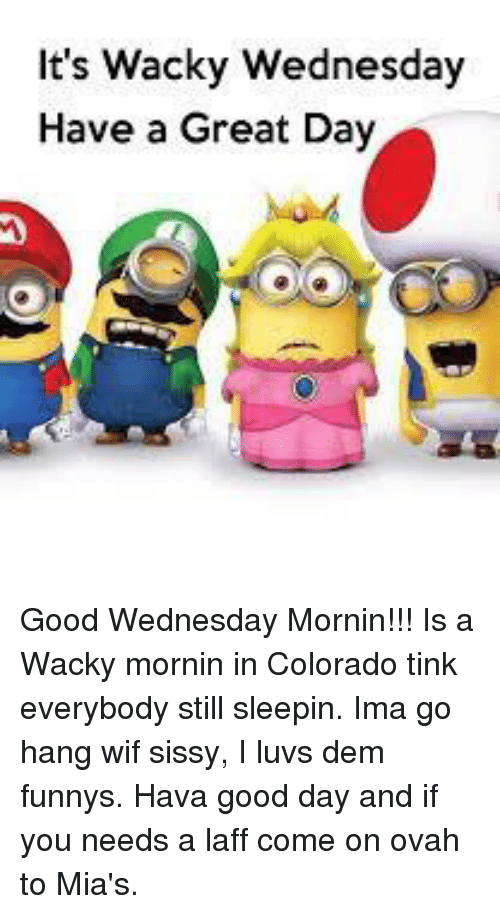 wacky wednesday: It's Wacky Wednesday  Have a Great Day Good Wednesday Mornin!!!  Is a Wacky mornin in Colorado tink everybody still sleepin.  Ima go hang wif sissy, I luvs dem funnys.  Hava good day and if you needs a laff come on ovah to Mia's.