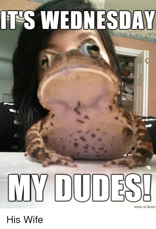 Funny Meme Wednesday : Its wednesday my dudes his wife dude meme on sizzle