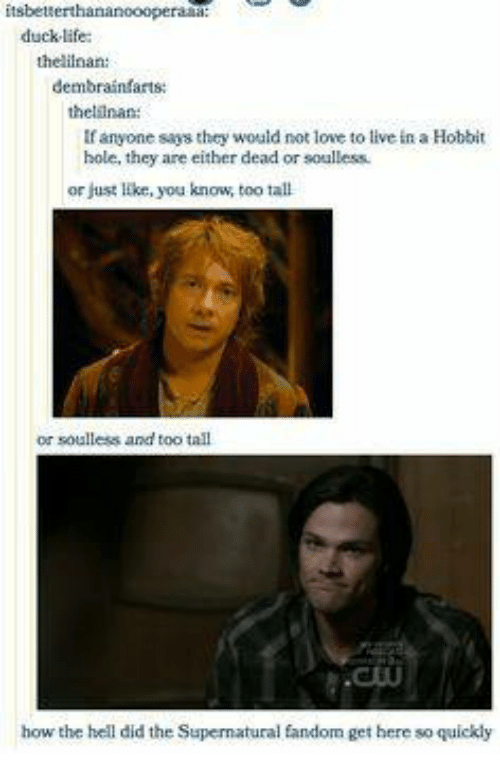 Soullessness: itsbett  duck life  thelilnan:  dembrainfarts  thellnan:  If anyone says they would not love to live in a Hobbit  hole, they are either dead or soulless.  or just like, you know, too tall  or soulless and too tall  how the hell did the Supernatural fandom get here so quickly