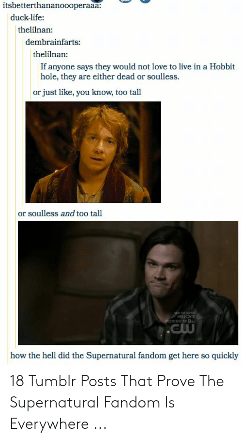 Supernatural Fandom: itsbetterthananoooperaaa:  duck-life:  thelilnan:  dembrainfarts:  thelilnan:  If anyone says they would not love to live in a Hobbit  hole, they are either dead or soulless.  or just like, you know, too tall  or soulless and too tall  HEİCAS  how the hell did the Supernatural fandom get here so quickly 18 Tumblr Posts That Prove The Supernatural Fandom Is Everywhere ...