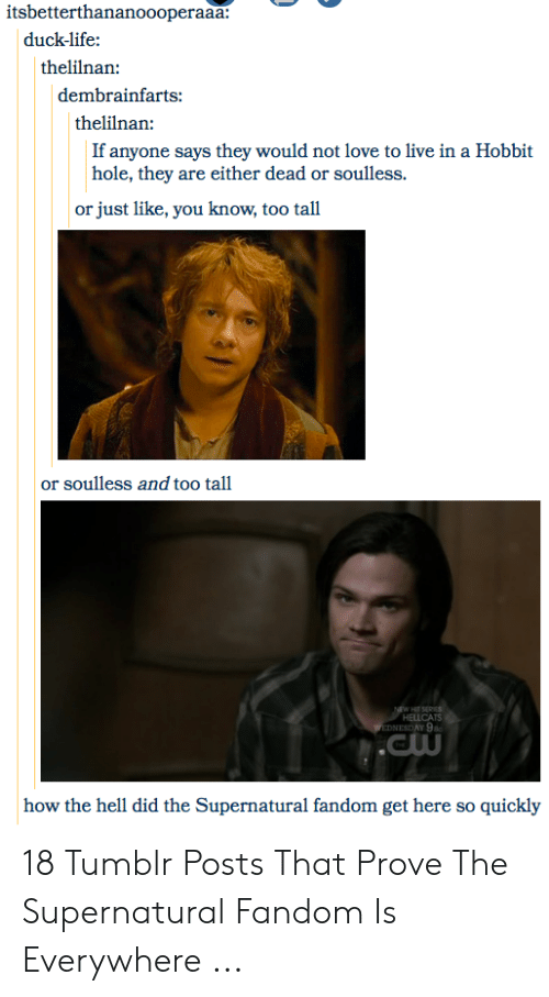 Supernatural Fandom: itsbetterthananoooperaaa:  duck-life  thelilnan  dembrainfarts:  thelilnan:  If anyone says they would not love to live in a Hobbit  hole, they are either dead or soulless.  just like, you know, too tall  or  or soulless and too tall  NEW HI SEPICS  HELLCATS  WEDNESDAY 9  .Cw  how the hell did the Supernatural fandom get here so quickly 18 Tumblr Posts That Prove The Supernatural Fandom Is Everywhere ...