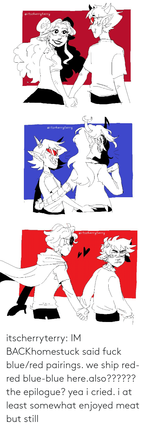 but still: itscherryterry:  IM BACKhomestuck said fuck blue/red pairings. we ship red-red blue-blue here.also?????? the epilogue? yea i cried. i at least somewhat enjoyed meat but still