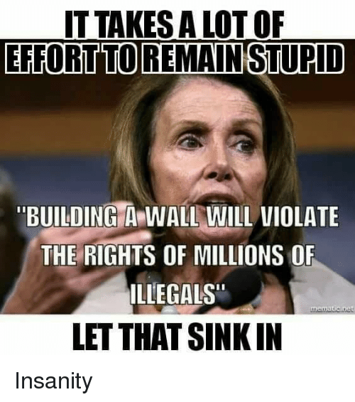 "Insanity, Will, and Violate: ITTAKES A LOT OF  EFFORTTOREMAINSTUPID  BUILDINGA WALL WILL VIOLATE  THE RIGHTS OF MILLIONS O  ILLEGALS""  LET THAT SINKIN Insanity"
