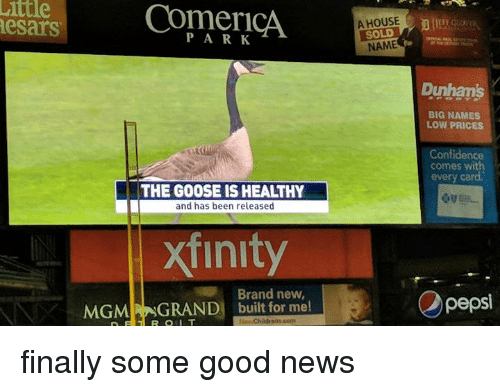 Confidence, News, and Good: ittle  A HOUSE  SOLD  NAME  esars  PARK  Dunhan's  BIG NAMES  LOW PRICES  Confidence  comes with  every card  THE GOOSE IS HEALTHY  and has been released  xfinity  Brand new,  MGM GRAND built for me  Opepsi finally some good news