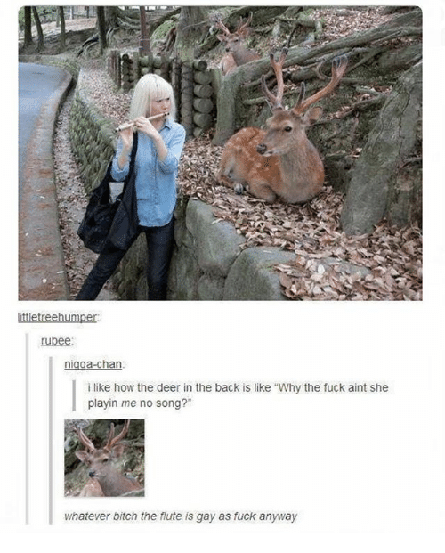 """Chanli: ittletreehumper  rubee:  nigga-chan  i like how the deer in the back is like """"Why the fuck aint she  playin me no song?""""  whatever bitch the flute is gay as fuck anyway"""
