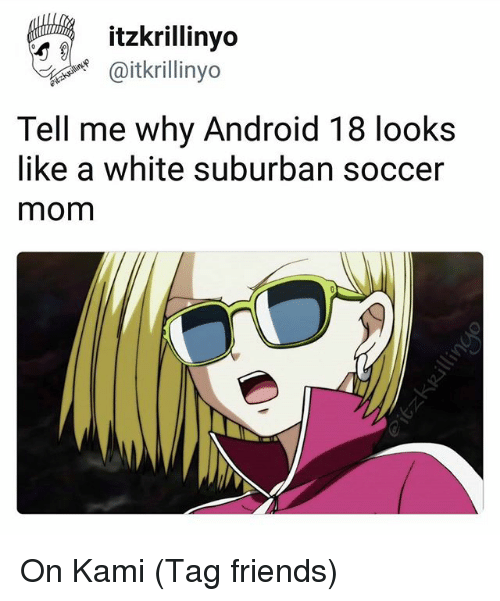 Android, Android 18, and Friends: itzkrillinyo  aitkrillinyo  Tell me why Android 18 looks  like a white suburban soccer  mom On Kami (Tag friends)