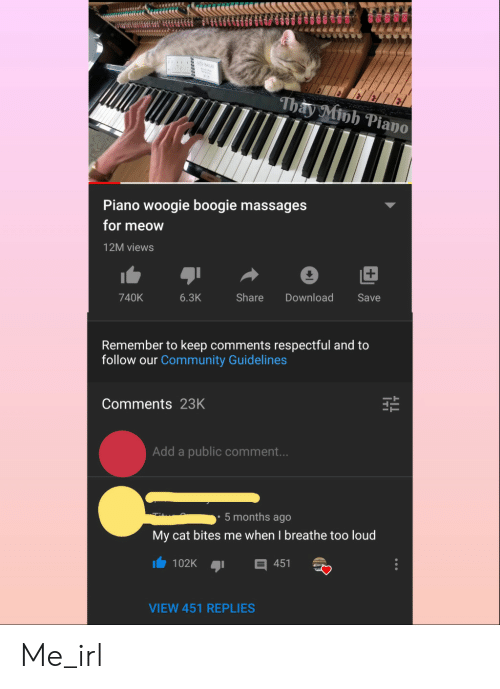 respectful: iu BALL  Thay Minh Piano  Piano woogie boogie massages  for meow  12M views  Share  740K  6.3K  Download  Save  Remember to keep comments respectful and to  follow our Community Guidelines  Comments 23K  Add a public comment...  5 months ago  My cat bites me when I breathe too loud  102K  451  VIEW 451 REPLIES Me_irl