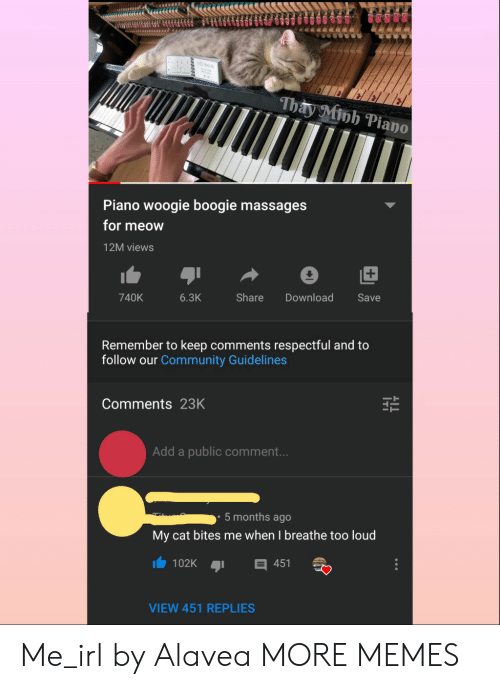respectful: iu BALL  Thay Minh Piano  Piano woogie boogie massages  for meow  12M views  Share  740K  6.3K  Download  Save  Remember to keep comments respectful and to  follow our Community Guidelines  Comments 23K  Add a public comment...  5 months ago  My cat bites me when I breathe too loud  102K  451  VIEW 451 REPLIES Me_irl by Alavea MORE MEMES