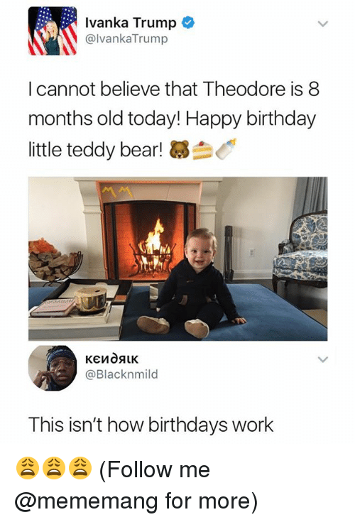 Birthday, Work, and Happy Birthday: Ivanka Trump  @lvankaTrump  I cannot believe that Theodore is 8  months old today! Happy birthday  little teddy bear!  @Blacknmild  This isn't how birthdays work 😩😩😩 (Follow me @mememang for more)