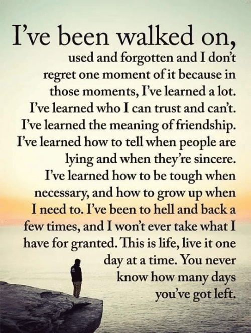 The Meaning: I've been walked on  used and forgotten and I don't  regret one moment of it because in  those moments, I've learned a lot.  I've learned who I can trust and can't.  I've learned the meaning of friendship.  I've learned how to tell when people are  lying and when they're sincere  I've learned how to be tough when  necessary, and how to grow up when  I need to. I've been to hell and back a  few times, and I won't ever take what I  have for granted. This is life, live it one  day at a time. You never  know how many days  you've got left.