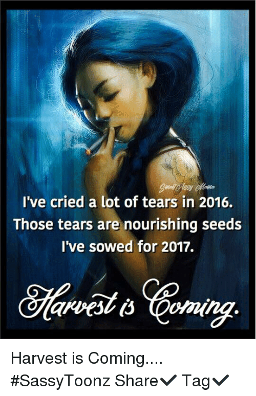 crying a lot: I've cried a lot of tears in 2016.  Those tears are nourishing seeds  I've sowed for 2017. Harvest is Coming.... #SassyToonz  Share✔️ Tag✔️