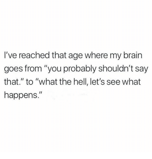 "Memes, Brain, and Hell: I've reached that age where my brain  goes from ""you probably shouldn't say  that."" to ""what the hell, let's see what  happens."""