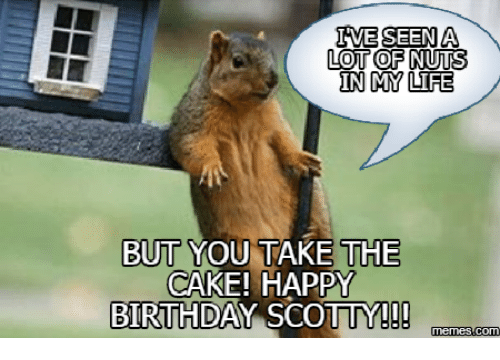 ive seen a lottofinutes in my life but you take 17940892 🔥 25 best memes about squirrel birthday meme squirrel birthday,Squirrel Birthday Meme