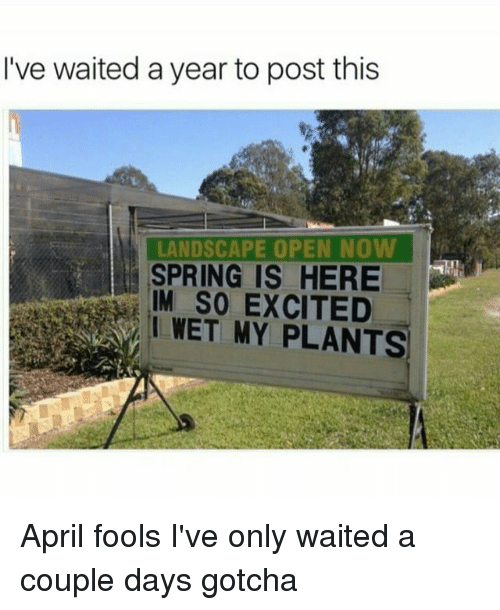 Memes, April Fools, and April: I've waited a year to post this  LANDSCAPE OPEN NOW  IS HERE  IM SO EXCITED  I WET MY PLANTS April fools I've only waited a couple days gotcha