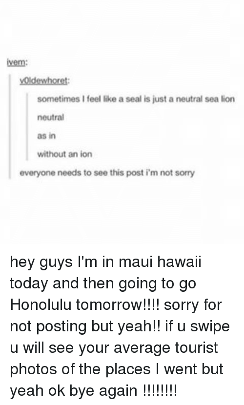 honolulu: ivem:  voldewhoret:  sometimes I feel like a seal is just a neutral sea lion  neutral  as in  without an ion  everyone needs to see this post i m not sorry hey guys I'm in maui hawaii today and then going to go Honolulu tomorrow!!!! sorry for not posting but yeah!! if u swipe u will see your average tourist photos of the places I went but yeah ok bye again !!!!!!!!