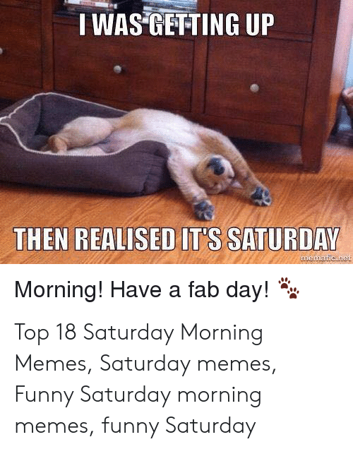fab: IWAS GETTING UP  THEN REALISED IT'S SATURDAY  Morning! Have a fab day! Top 18 Saturday Morning Memes, Saturday memes, Funny Saturday morning memes, funny Saturday