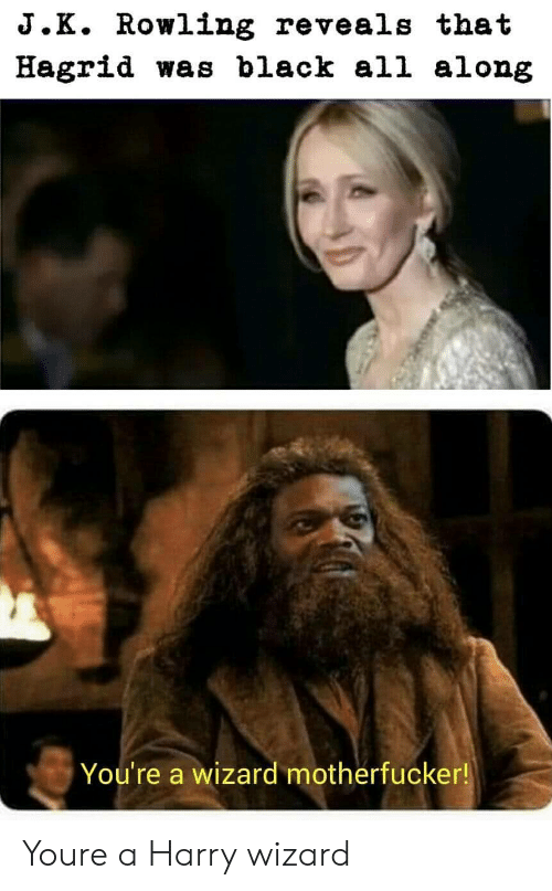 hagrid: J.K. Rowling reveals that  Hagrid was black all along  You're a wizard motherfucker! Youre a Harry wizard