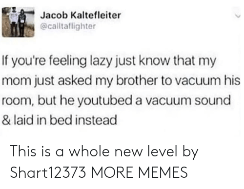 Dank, Lazy, and Memes: Jacob Kaltefleiter  @calltaflighter  If you're feeling lazy just know that my  mom just asked my brother to vacuum his  room, but he youtubed a vacuum sound  & laid in bed instead This is a whole new level by Shart12373 MORE MEMES