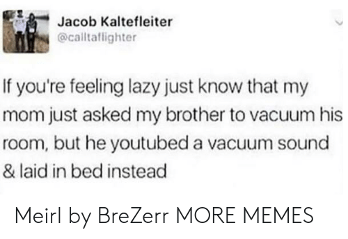 Dank, Lazy, and Memes: Jacob Kaltefleiter  @caltaflighter  If you're feeling lazy just know that my  mom just asked my brother to vacuum his  room, but he youtubed a vacuum sound  & laid in bed instead Meirl by BreZerr MORE MEMES