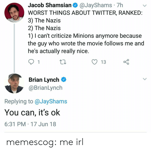 R Me Irl: Jacob Shamsian @JayShams 7h  WORST THINGS ABOUT TWITTER, RANKEID  3) The Nazis  2) The Nazis  1) I can't criticize Minions anymore because  the guy who wrote the movie follows me and  he's actually really nice  O 13  Brian Lynch  @BrianLynch  Replying to @JayShams  You can, it's ok  6:31 PM 17 Jun 18 memescog:  me irl