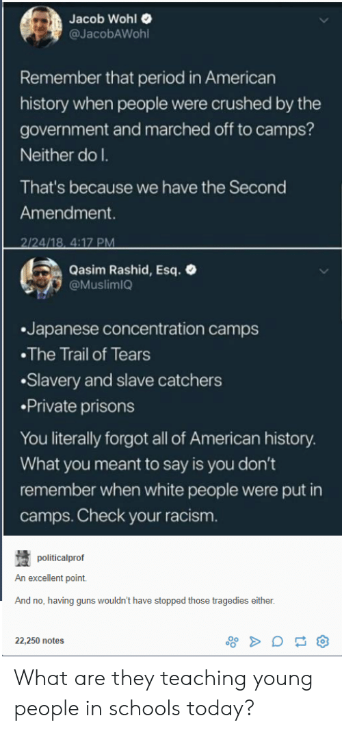 Rashid: Jacob Wohl  @JacobAWohl  Remember that period in American  history when people were crushed by the  government and marched off to camps?  Neither do l.  That's because we have the Second  Amendment.  4/18. 4:17 PM  Qasim Rashid, Esq.  @MuslimiQ  .Japanese concentration camps  The Trail of Tears  Slavery and slave catchers  Private prisons  You literally forgot all of American history  What you meant to say is you don't  remember when white people were put in  camps. Check your racism  politicalprof  An excellent point.  And no, having guns wouldn't have stopped those tragedies either  22,250 notes What are they teaching young people in schools today?