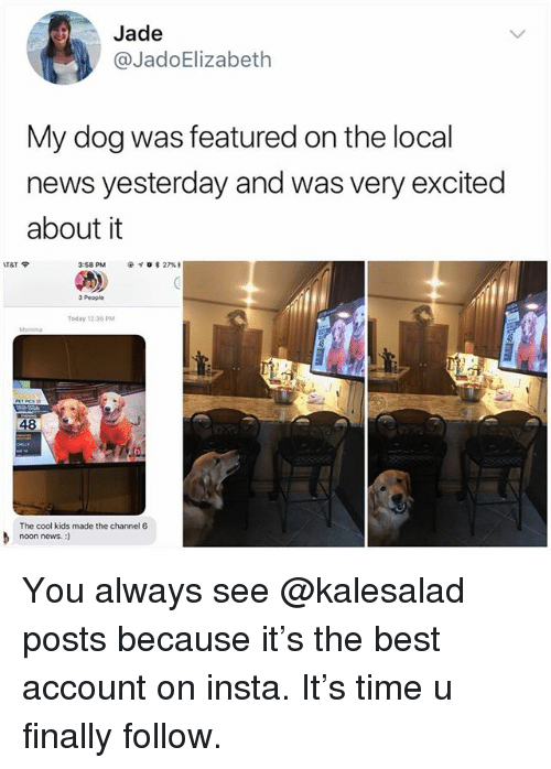 Memes, News, and Best: Jade  @JadoElizabeth  My dog was featured on the local  news yesterday and was very excited  about it  3:58 PM  @イ. * 27% ,  3 People  Today 12.36 PM  48  β  nonnews.ds made the channel6  noon news.:) You always see @kalesalad posts because it's the best account on insta. It's time u finally follow.