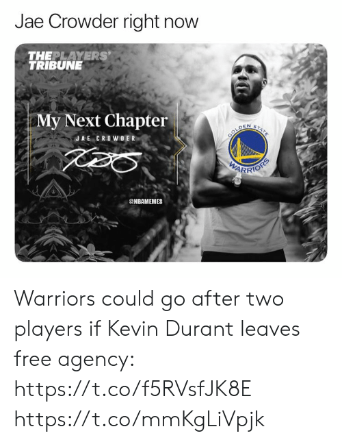 Jae Crowder: Jae Crowder right now  THEPLAYERS'  TRIBUNE  My Next Chapter  TATE  GOLDEN  JAE CROWOER  VARRIONS  @ИВАMEMES Warriors could go after two players if Kevin Durant leaves free agency: https://t.co/f5RVsfJK8E https://t.co/mmKgLiVpjk