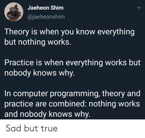 Programming: Jaeheon Shim  @jaeheonshim  Theory is when you know everything  but nothing works.  Practice is when everything works but  nobody knows why.  In computer programming, theory and  practice are combined: nothing works  and nobody knows why. Sad but true