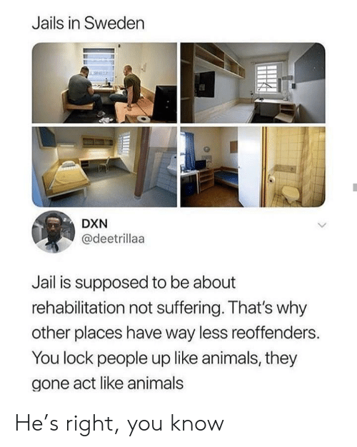 Sweden: Jails in Sweden  DXN  @deetrillaa  Jail is supposed to be about  rehabilitation not suffering. That's why  other places have way less reoffenders.  You lock people up like animals, they  gone act like animals He's right, you know