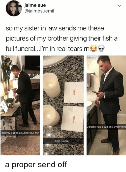 Fish, Pictures, and Relatable: jaime sue  @jaimesuemil  so my sister in law sends me these  pictures of my brother giving their fish a  full funeral i'm in real tears rnea  e kemp  Jeremy has a suit and everything  Jeremy put on a suit for our fish  Fish funeral a proper send off