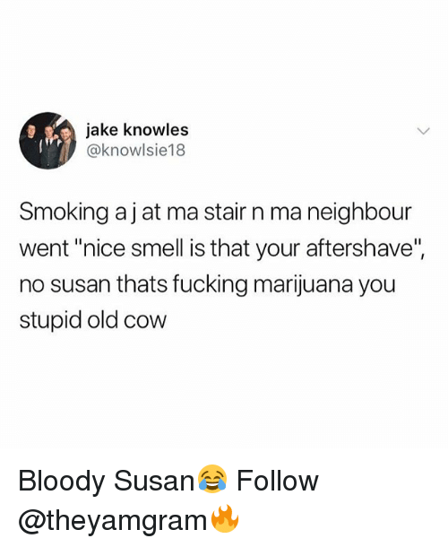 """knowles: jake knowles  @knowlsie18  Smoking aj at ma stair n ma neighbour  went """"nice smell is that your aftershave"""",  no susan thats fucking marijuana you  stupid old cow Bloody Susan😂 Follow @theyamgram🔥"""