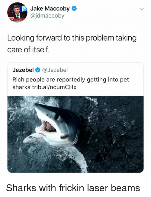 Jezebel: Jake Maccoby  @jdmaccoby  OBYAGEN ERIC H  Looking forward to this problem taking  care of itself  Jezebel @Jezebel  Rich people are reportedly getting into pet  sharks trib.al/ncumCHx Sharks with frickin laser beams