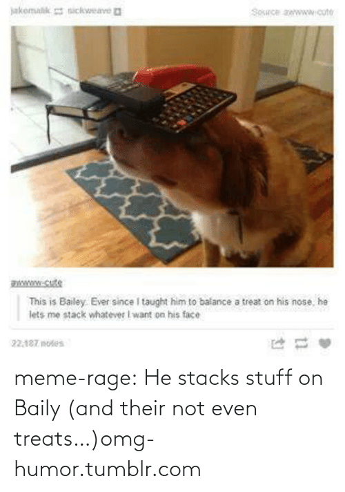 meme: jakemalk sickweave a  Souce awwww.cute  www.cute  This is Bailey. Ever since I taught him to balance a treat on his nose, he  lets me stack whatever I want on his face  22.187 notes meme-rage:  He stacks stuff on Baily (and their not even treats…)omg-humor.tumblr.com