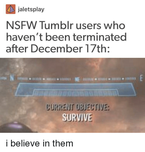 tumblr users: jaletsplay  NSFW Tumblr users who  haven't been terminated  after December 17th:  CURRENI OBECTIVE:  SURVIVE i believe in them