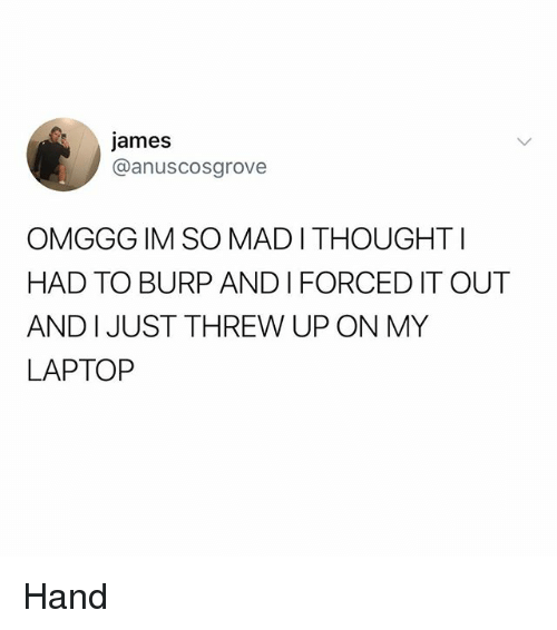 Memes, Laptop, and 🤖: james  @anuscosgrove  OMGGG IM SO MADI THOUGHTI  HAD TO BURP AND I FORCED IT OUT  AND I JUST THREW UP ON MY  LAPTOP Hand